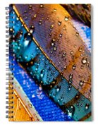 Gold Jay Feathers Spiral Notebook