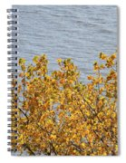 Gold Leaves Spiral Notebook