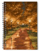 Gold Reflections Spiral Notebook