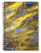 Gold Waters Spiral Notebook
