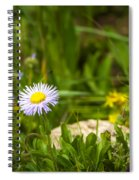 Golden Afternoon Spiral Notebook