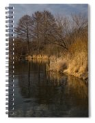 Golden Afternoon Reflections Spiral Notebook