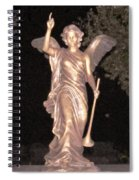 Golden Angel In The Night Spiral Notebook