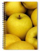 Golden Apples Spiral Notebook