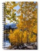 Golden Aspen On The Lake Spiral Notebook