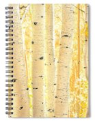 Golden Aspens Utah Spiral Notebook