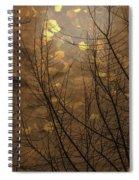 Golden Autumn Abstract Sky Spiral Notebook
