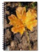 Golden Autumn Maple Leaf Filtered Spiral Notebook