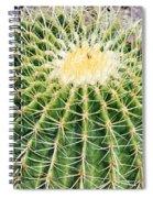 Golden Ball Cactus Spiral Notebook