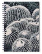 Golden Barrel Spiral Notebook