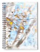Golden Birch Spiral Notebook