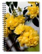 Golden Blooms One Spiral Notebook