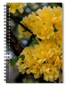 Golden Blooms Two Spiral Notebook