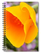 Golden California Poppy Spiral Notebook