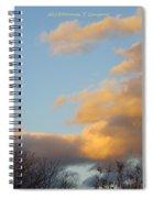 Golden Cascade Spiral Notebook