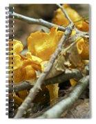 Golden Chanterelle - Cantharellus Cibarius Spiral Notebook