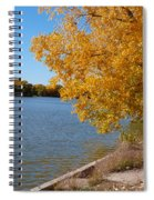 Golden Cottonwoods Spiral Notebook