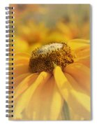 Golden Crown - Rudbeckia Flower Spiral Notebook