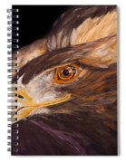Golden Eagle Close Up Painting By Carolyn Bennett Spiral Notebook