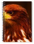 Golden Eagle Eye Fractalius Spiral Notebook