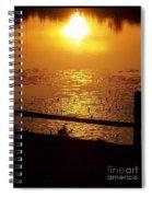 Golden Endings Spiral Notebook