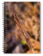 Golden Fern Spore Stem 6 Spiral Notebook
