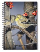 Golden Finch Cold Shoulder Spiral Notebook