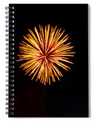 Golden Fireworks Flower Spiral Notebook