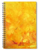 Golden Flames Spiral Notebook