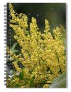 Golden Flora 2013 Spiral Notebook