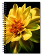 Golden Flower  Spiral Notebook