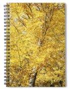 Golden Foliage Spiral Notebook