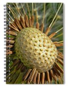 Seeds Of Time Spiral Notebook