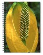 Golden Glow Spiral Notebook