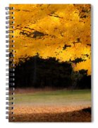 Golden Glow Of Autumn Fall Colors Spiral Notebook