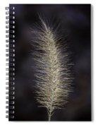 Golden Grass Spiral Notebook