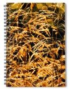 Golden Grasses Spiral Notebook