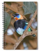 Golden-hooded Tanager Spiral Notebook