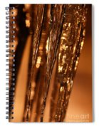 Golden Ice Spiral Notebook