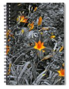 Golden Invite Spiral Notebook