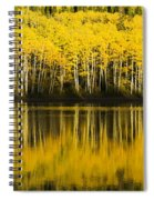 Golden Lake Spiral Notebook