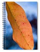 Golden Lanceolate Leaf Spiral Notebook