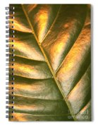 Golden Leaf 2 Spiral Notebook