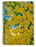 Golden Leaves Of Autumn Spiral Notebook