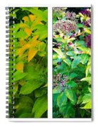 Golden Leaves To Purple Seeds Spiral Notebook