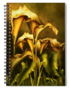 Golden Lilies By Night Spiral Notebook