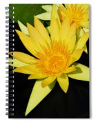 Golden Lily Spiral Notebook