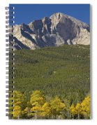 Golden Longs Peak View Spiral Notebook