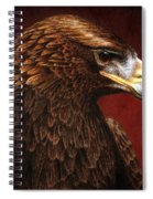 Golden Look Golden Eagle Spiral Notebook