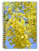 Golden Medallion Shower Tree Spiral Notebook